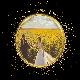 circle_gold_stars